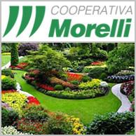 COOPERATIVA MORELLI